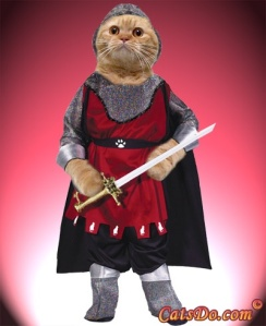 No, my novella is not about a crusading medieval cat-knight.