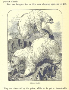 From Beorn's Family Album. Long deceased cousins from the Far North of Middle Earth.