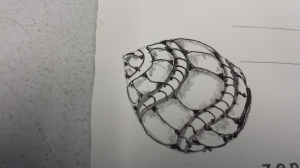 Rough Draft: Zentangle seed from the Tree.